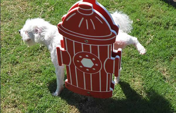 dog-playgrounds